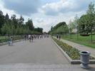 גן אלכסנדר