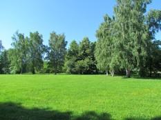 ירוק בפארק קולומנסקיה
