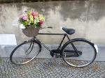 סלסלת פרחים על אופניים - דרכון לאיי וייויי