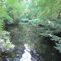 Tiergarten_46055