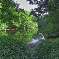 Tiergarten_46060HDR