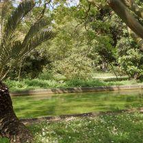בגן הבוטני טרופי בבלם